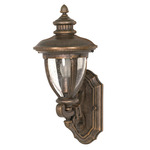 (1 Light) (Arm Up) Wall Lantern - Platinum Gold / Clear Seed Glass - Nuvo Lighting 60-951