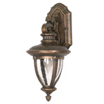 (1 Light) (Arm Down) Wall Lantern - Platinum Gold / Clear Seed Glass - Nuvo Lighting 60-953 - Residential Light Fixture