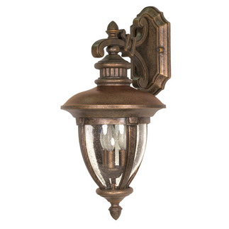 (3 Light) (Arm Down) Wall Lantern - Platinum Gold / Clear Seed Glass - Nuvo Lighting 60-957