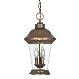 (3 Light) Hanging Lantern - Platinum Gold / Clear Seed Glass - Nuvo Lighting 60-969 - Residential Light Fixture
