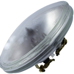 50 Watt - PAR36 - 12 Volt - Incandescent Light Bulb  - PAR36NSP50/M - Halco 816540 PAR36 Flood Light