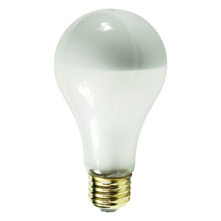 Silver Bowl Light Bulb A19