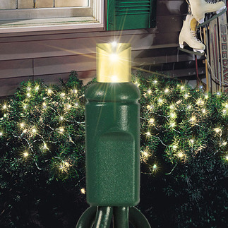 Warm White - 120 Volt - 105 LED Bulbs - Wide Angle Lens - 4 ft. x 6 ft. - Green Wire - Christmas Net Lights - Superior Holiday Lighting 1100015
