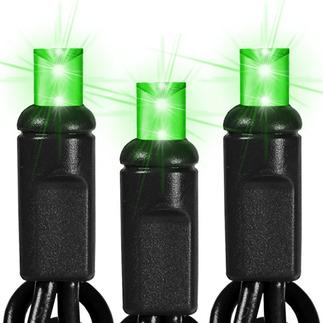 Lime Green Led String Lights : 25 ft. String Light - 50 Lime Green LED Bulbs - Black Wire