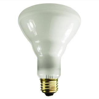 65 Watt - BR30 Light Bulb - 5,000 Hours