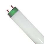 Linear Fluorescent Tube Light