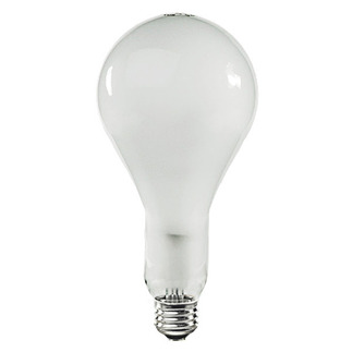 PS30 Incandescent Light Bulb