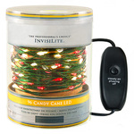 InvisiLite Mini LED Light String
