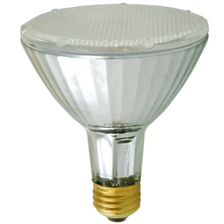 50 Watt - PAR30 - Spot - Long Neck - 120 Volt - Halogen Light Bulb - Philips 229237
