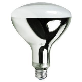 eye 68192 160w self ballasted mercury vapor lamp. Black Bedroom Furniture Sets. Home Design Ideas