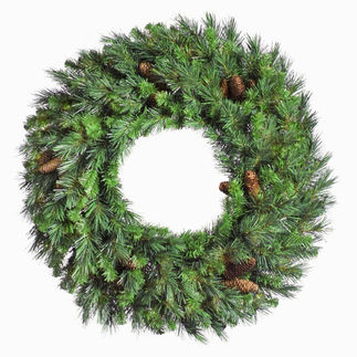 Vickerman A801024 - 2 ft. Christmas Wreath - Classic PVC Needles - Cheyenne Pine - Unlit