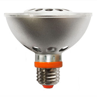 10 Watt - LED - PAR30 - Short Neck - 3000K Warm White - Spot
