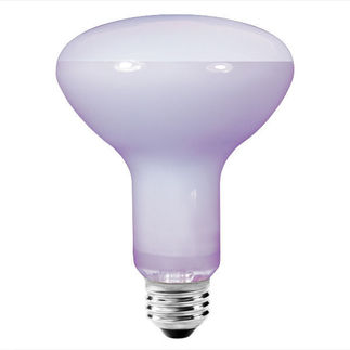 Bulbrite 711065 - 65 Watt - R30