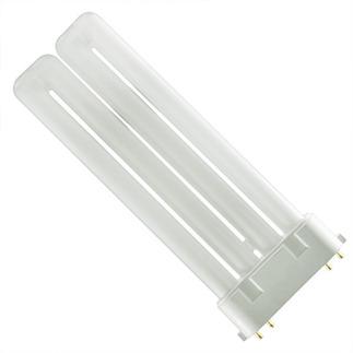 Plug In CFL