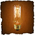 antique light bulb, reproduction, edison style, t10