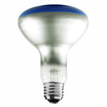 65 Watt - BR30 - Blue - 120 Volt - 2,000 Life Hours - Halogen Light Bulb