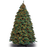 8 ft. x 60 in. Artificial Christmas Tree - Pre-Lit Alaskan Fir - Classic PVC Needles - Barcana