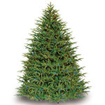 9 ft. x 60 in. Artificial Christmas Tree - Pre-Lit Belvedere Fir - Realistic PE/PVC Needles - Barcana