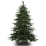 4.5 ft. Artificial Christmas Tree - Pre-Lit Star Fir - Realistic PE/PVC Needles - Barcana