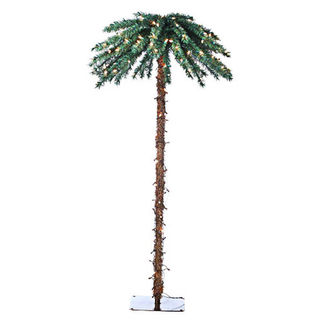 6 ft. Christmas Palm Tree - 200 Clear Mini Lights - Sterling 5208-60C