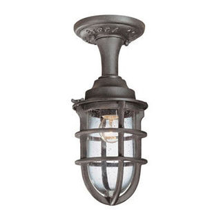 Troy Lighting C1863NR