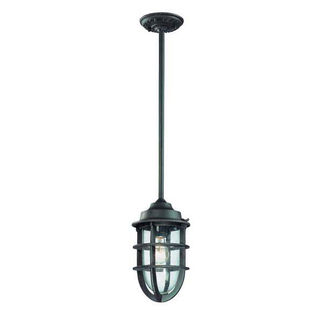 Troy Lighting F1862NR