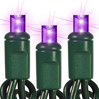 (48) Bulbs - Commercial LED System - Purple Wide Angle Mini Lights - Length 24 ft. - Bulb Spacing 6 in. - Green Wire - 24V - Non-Rectified - 1-Channel