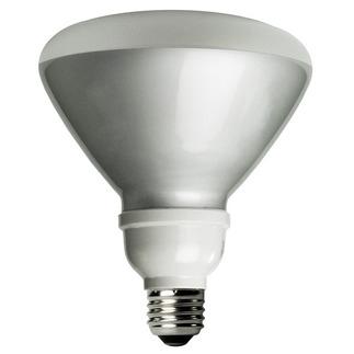 TCP 1R4019-41K - 19 Watt - R40 CFL - 4100K
