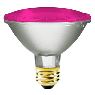 75 Watt - PAR30 - Pink - 120 Volt - 2,500 Life Hours - Halogen Light Bulb - Bulbrite 683756