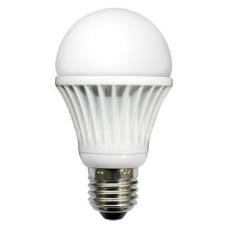 8 Watt - Dimmable - LED Light Bulb - A19 - 5000K Warm White