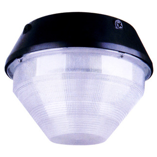 100 Watt - Metal Halide Canopy Light