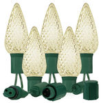 (25) Bulbs - Commercial LED System - Warm White C9 Lights - Length 25 ft. - Bulb Spacing 12 in. - 120V - Green Wire - Rectified - Requires one plug adapter (not included)