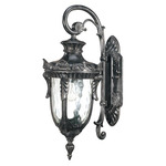(1 Light) (Arm Down) Small Wall Lantern - Greystone / Clear Water Glass - Nuvo Lighting 60-2023