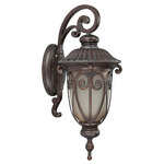 (1 CFL) (Arm Down) Mid-Size Wall Lantern - Burlwood / Clear Seed - Energy Star Qualified - Nuvo Lighting 60-3924