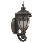 (1 CFL) (Arm Up) Small Wall Lantern - Burlwood / Clear Seed - Energy Star Qualified - Nuvo Lighting 60-3925